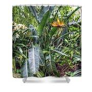 Otts Waterfall Room   Schwenksville Pennsylvania Usa Shower Curtain