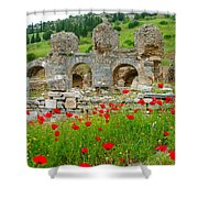 Our Entry Into Ephesus And Its Baths-turkey Shower Curtain
