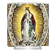 Our Lady Of Guadelupe 1848 Shower Curtain