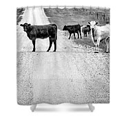 Our Way Or The Highway Bw Shower Curtain