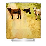 Our Way Or The Highway P Shower Curtain