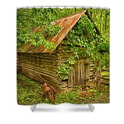 Out Back Shower Curtain by Priscilla Burgers