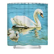 Out For A Morning Swim Shower Curtain