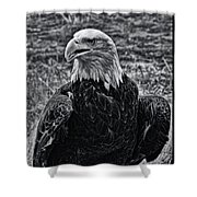 Out In The Field Shower Curtain