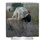 Out Of Africa  Friendly Wolves Shower Curtain