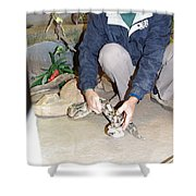 Out Of Africa Viper 1 Shower Curtain