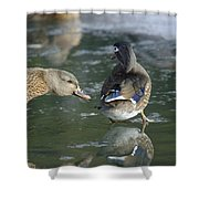 Out Of My Roosting Ice Spot Shorty Shower Curtain