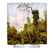Out Of The Jungle Shower Curtain
