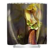 Out Of The Mist  Shower Curtain
