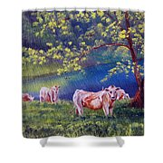 Out To Pasture Shower Curtain