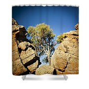 Outback Tree Shower Curtain