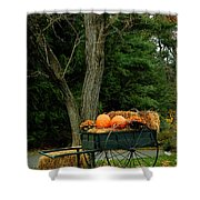 Outdoor Fall Halloween Decorations Shower Curtain