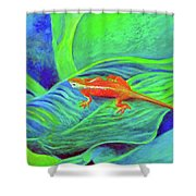 Outer Banks Gecko Shower Curtain