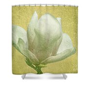 Outer Magnolia Shower Curtain