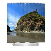 Outgoing Trinidad Tide Shower Curtain
