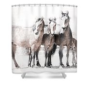 Outlaws Xi Shower Curtain