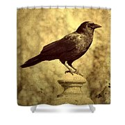 The Raven's Outlook Shower Curtain