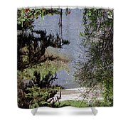 Outta The Woods Shower Curtain