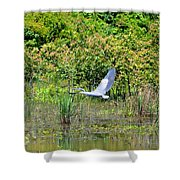 Over Golden Waters Shower Curtain