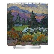 Overcast Light In Santa Barbara Shower Curtain