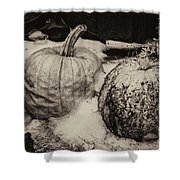 Overdue Fall Feast Remains Shower Curtain