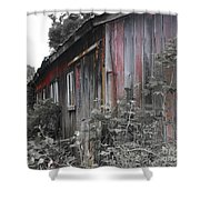 Overgrown Shed B/w Shower Curtain