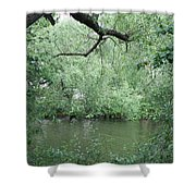 Overhanging Tree Shower Curtain