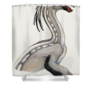 Oviraptor, A Small Dinosaur That Lived Shower Curtain