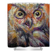 Owl Aceo Shower Curtain