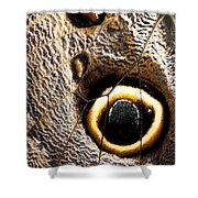 Owl Butterfly Wing Shower Curtain