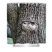 Owl Face Shower Curtain
