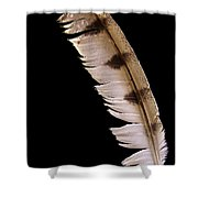 Owl Feather Shower Curtain