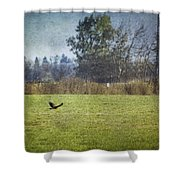 Owl Hunting No. 2 Shower Curtain