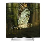 Owl In Flight Shower Curtain