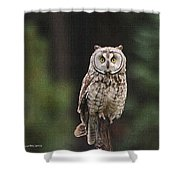 Owl In The Forest Visits Shower Curtain