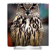 Owl Living In The Spanish Mountains Shower Curtain