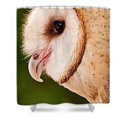 Owl Profile Shower Curtain