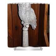 Owl Statue Shower Curtain