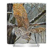Owl Taking Off Shower Curtain