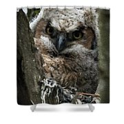 Owlet On The Watch Shower Curtain