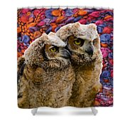 Owlets In Color Shower Curtain