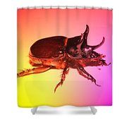 Ox Beetle In Color Shower Curtain