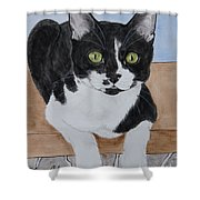 Pablo The Cat Shower Curtain