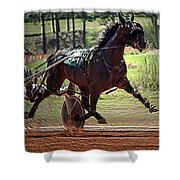 Pacer Shower Curtain