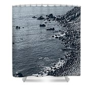 Pacific Coast 4 Shower Curtain