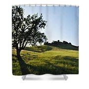 Pacific Coast Oak Malibu Creek Landscape Shower Curtain