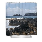 Pacific Coast On The Road To Hana Shower Curtain