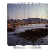 Pacific Flyway Shower Curtain