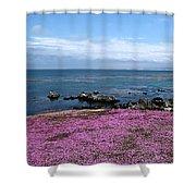 Pacific Grove California Shower Curtain