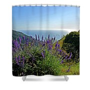 Pacific Lupines Shower Curtain